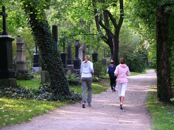 Joggen im Alten Nördlichen Friedhof