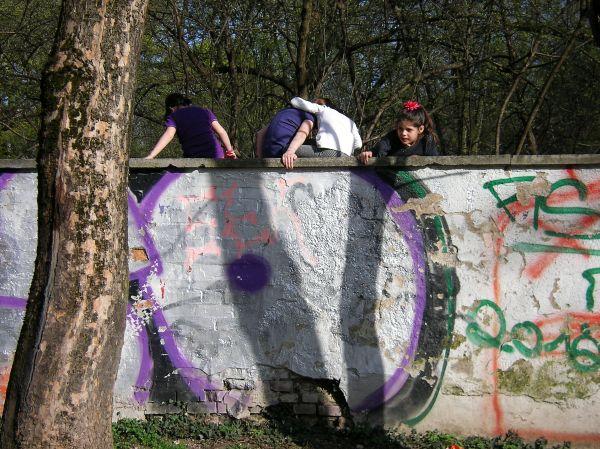 Friedhofsmauer - Trendfarbe lila