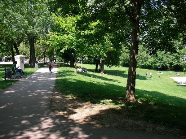 Hangkante im Maßmannpark