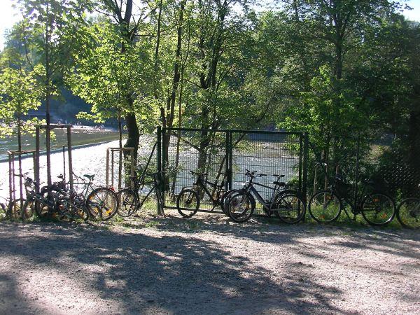 Zaun an der Fischtreppe / Oberföhring