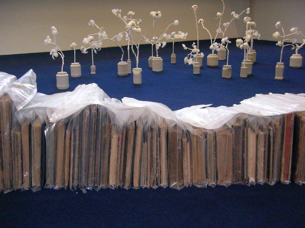 Installationen Pflanzen und Bücher