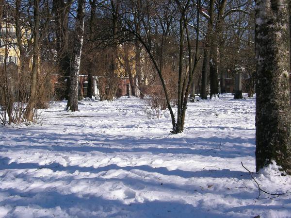 Schneedecke im Alten Friedhof