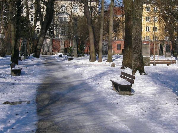 Winterweg im Alten Friedhof