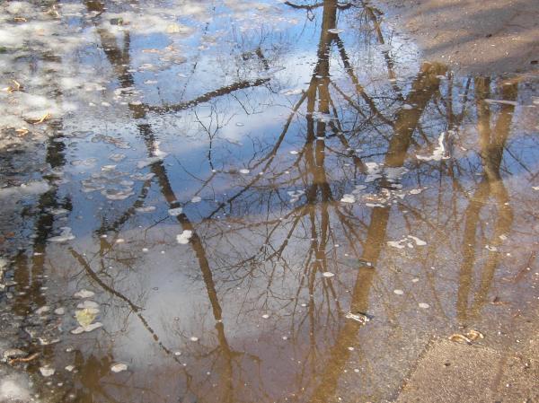 Spiegelungen im Schmelzwasser